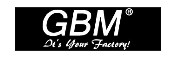 gbm-2-500